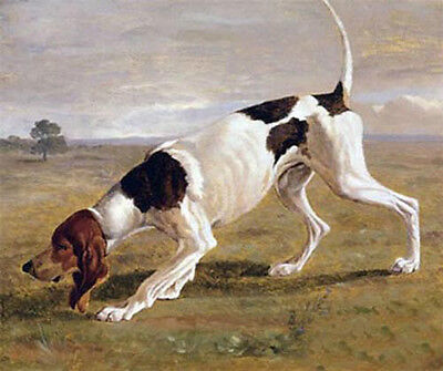 Handpainted Oil painting nice animal dog English Springer Spaniel in landscape