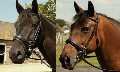 Heritage Padded English Leather Comfort Horse Riding Snaffle Bridle All Size