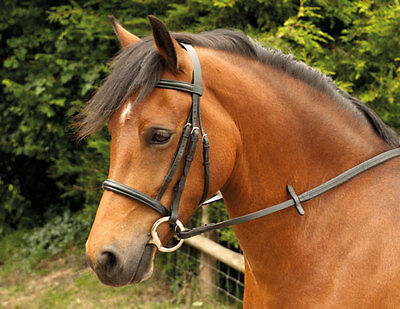 Windsor Leather Snaffle Cavesson Horse Riding Bridle with Reins, Black or Havana