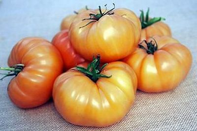 Kelloggs Breakfast Heirloom Tomato 30 Seed Moon Gardens Simply Grown Beautifully