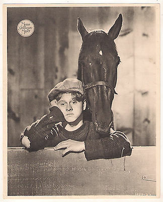 F10489 STABLEMATES WALLACE BEERY MICKEY ROONEY MGM Lobby Card Spain B