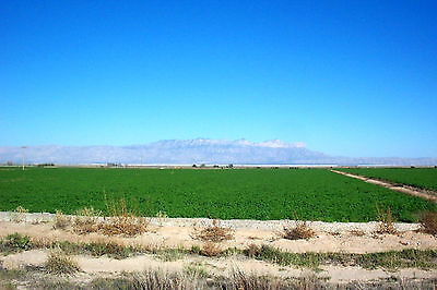 10.43 ACRES OF DELL CITY - TEXAS FARM LAND / RANCH LAND - $99 PER MONTH TERMS!!!