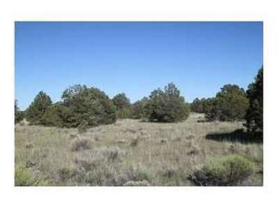 13.593 AC of Vacant Land in Catron County, NM - Reduced to Sell-Bankruptcy Sale