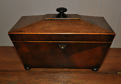 Antique Regency Period Mahogany Sarcophagus Shaped Triple Section Tea Caddy