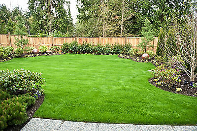250KG  HARD WEARING LAWN GRASS SEED *DEFRA LICENCED*HM.4