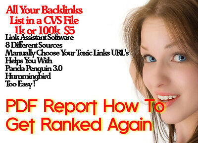 Website Backlink Report/ How to Rank Again PDF