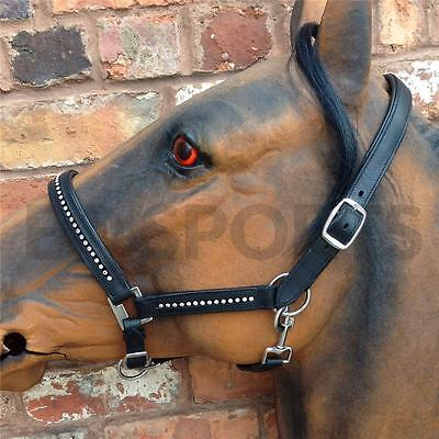 FREE POSTAGE! Padded Leather Diamonte/Diamante Headcollar/Halter X/F- F-C-P