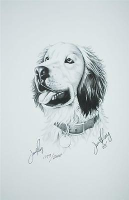 SIGNED LITHOGRAPH JESSE RAY PORTRAIT AMERICAN BALD EAGLE PENCIL SKETCH 2004 SS2