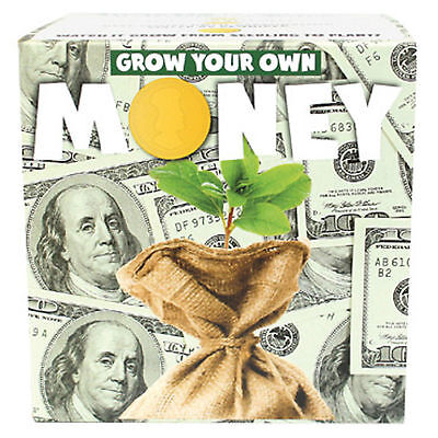 Grow Your Own Money Kit Novelty Gift Brand New Present Fun Seeds Plant Nature