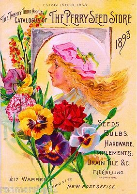 1893 - Perry Store Catalogue Vintage Flowers Seed Packet Advertisement Poster