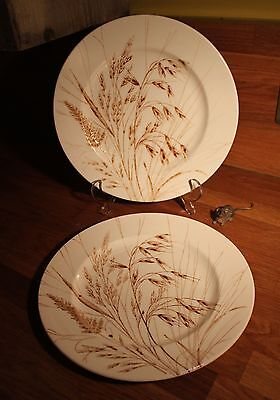 """Pair of 9.75"""" dinner plates by English Ironstone Tableware Ltd in vgc - wheat"""