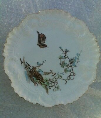 Vintage Limoges Bird And Flowers European china Plate
