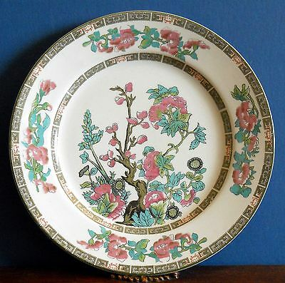 """A Vintage Indian tree 9"""" Salad plate in Royal Vitreous by John Maddock & Sons"""