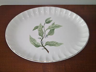 Vintage W. S. GEORGE Bolero B8760 13 5/8 inch Oval Platter in EUC from ESTATE