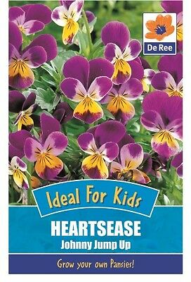 2 Packs of Heartsease Johnny Jump Up Flower Seeds, Approx 120 Seeds per pack
