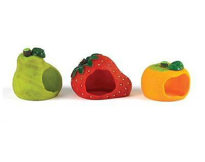 Hamster House Bed Classic Fruity House Assortment PEAR ORANGE OR STRAWBERRY