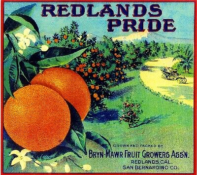 Redlands Pride Orange Citrus Fruit Crate Label Art Print