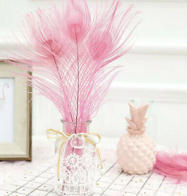 5 Baby Pink Dyed 25-30cm Peacock Eye Natural Feathers DIY Craft Millinery Vase