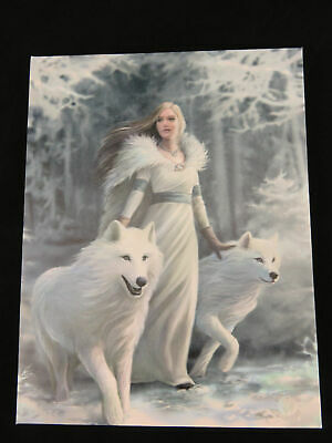 "Anne Stokes ""Winter Guardian"" Canvas Wall Art Plaque 25 x 19 cm Gothic Fantasy"