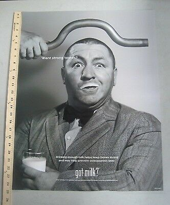 Got Milk advertising Promo Poster Curly Howard 1999 Three Stooges 19 x 24.5