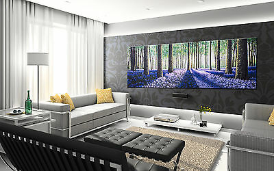 150cm x 50cm  ART FOREST TREES WOODS  LANDSCAPE  print  canvas not framed