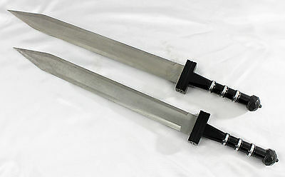 Roman Gladiator Gladius Sword Set -- 2 Steel Swords + Sheaths -- greek/trojan