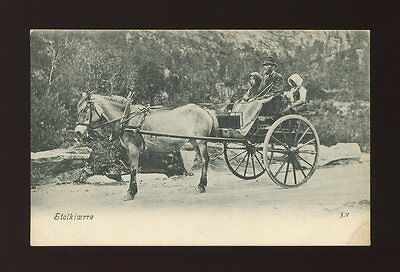 Norway STOLKJAERRE family in Horse and carriage c1902 u/b PPC