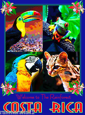 Costa Rica Welcome to Rainforest Central America Travel Poster Advertisement