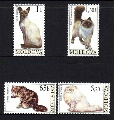 Moldova 2007 Cats Set 4 MNH