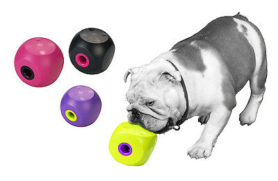 Buster Cube Treat Dispenser for Dogs