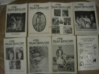 1990-99 THE ITALIAN GREYHOUND MAGAZINE BOOK 70 issues and 10 Specialty catalogs