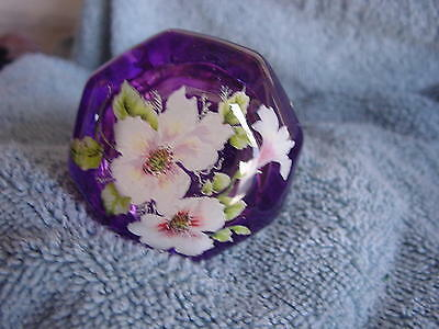 Door Knobs - 2 Knobs -Glass 2.25. Inch- Dogwood Antique Clear Knobs With My Work