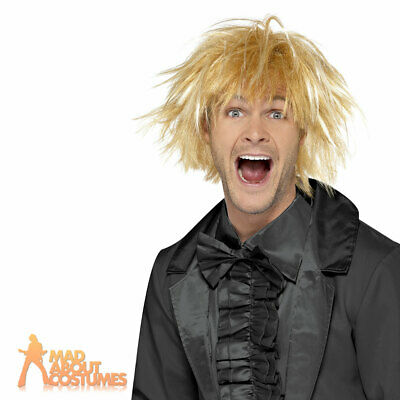 Dumb and Dumber Wig Harry Dunne Messy Surfer Guy Fancy Dress Costume Accessory