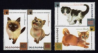 Bulgaria 2013 Domestic Cats Set 4 MNH