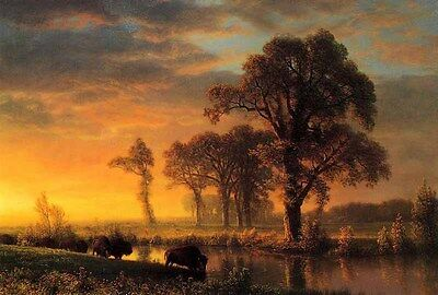 Oil Albert Bierstadt Western Kansas Buffalo cows crossing the river landscape