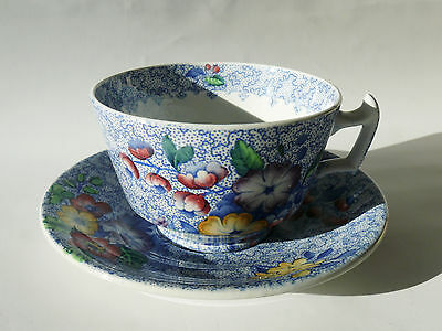 Spode WILD FLOWER / WILDFLOWER - BLUE Tea Cup and Saucer - slt stn, crzg