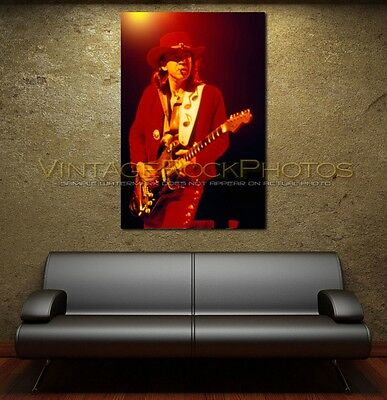 Stevie Ray Vaughan Canvas Print 20x30 Fine Art Gallery Framed Giclee Print 166