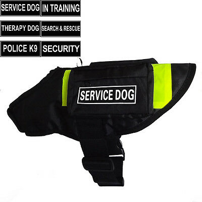SERVICE DOG Vest Harness with Side Bags label Patches IN TRAINING THERAPY DOG