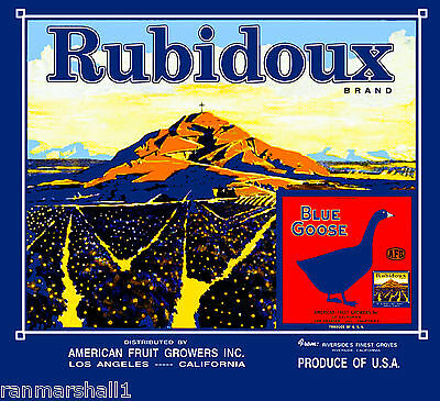 Riverside Blue Goose Mt. Rubidoux #5 Orange Citrus Fruit Crate Label Art Print