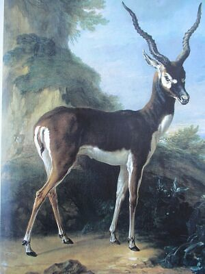 Oil painting giulio rosati - Nude girls picking the favourite Arab slave market