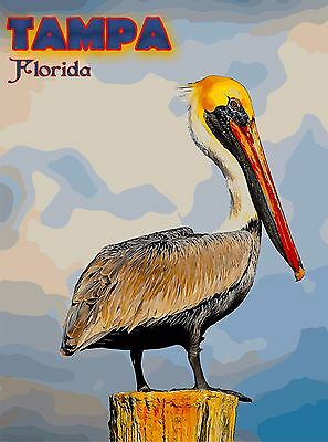 Tampa Pelican Bird Florida United States Travel Advertisement Art Poster