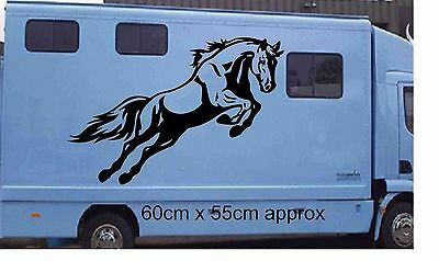HORSE Box  Sticker  Decals Tac Van Stable ,Motor Home, Van, Horsebox Trailer