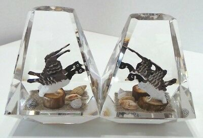 2 Large Lucite Paperweights Canadian Geese ~Made in Canada