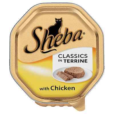 Sheba Wet Cat Food Classic in Terrine with Chicken 18 x 85g