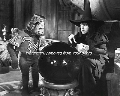 The Wizard of Oz, Wicked Witch and Flying Monkey: Premium 8 x 10 Photo Print
