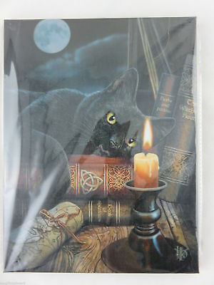 "Lisa Parker ""Witching Hour"" Canvas Wall Art Plaque 25 x 19 cm Fantasy Wicca"