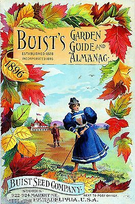 1896 Buist's Garden Vintage Flowers Seed Packet Catalogue Advertisement Poster