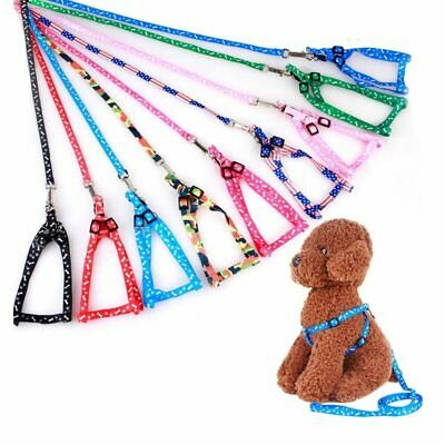 Small pet Dog Puppy Cat Kitten Harness for walking 120cm lead / leash included