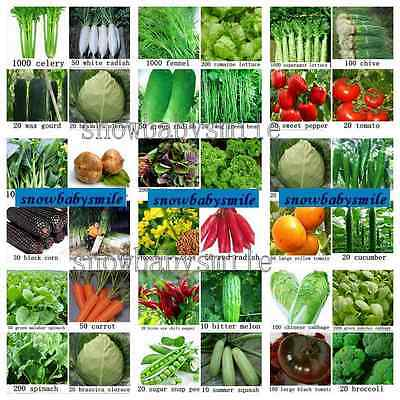 BUY 2 GET 1 FREE Economy Pack Vegetable Fuit Seeds Survival Heirloom Lot NON GMO