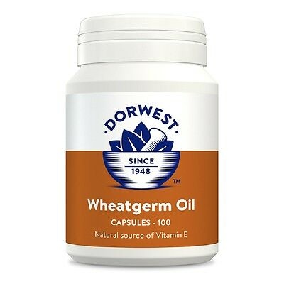 Dorwest Wheatgerm Oil Capsules 100, Premium Service, Fast Dispatch